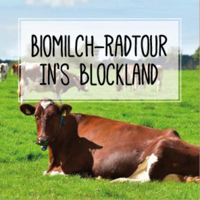 Biomilch Radtour ins Blockland 2017